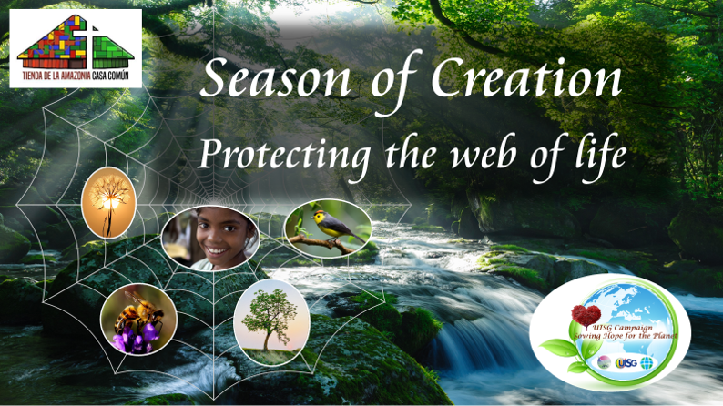 Season of Creation Newsletter